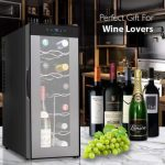 Nutrichef PKTEWC120 Thermoelectric Wine Cooler. Best Vertical 12 Bottle Wine Cellar Ever?