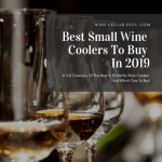 Best Small Wine Coolers To Buy In 2019 – A Full Overview Of The Best 4-30 Bottle Wine Coolers And Which One To Buy!
