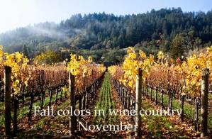november wine country
