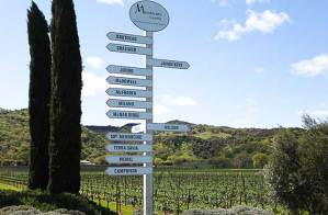 hopland wineries