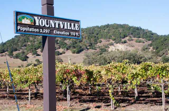 yountville in napa valley