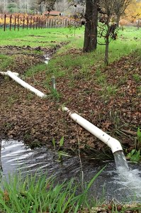 napa valley rain water