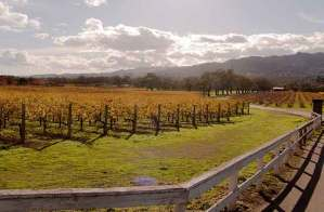 sonoma valley winter