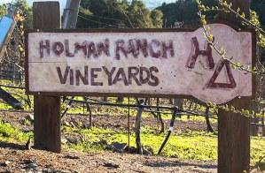 holman ranch vineyards