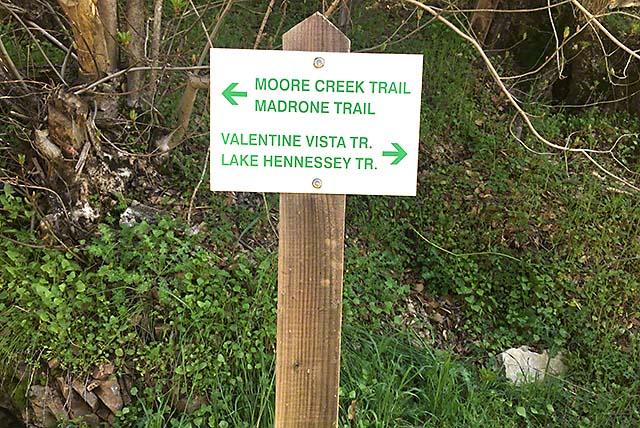 Moore Creek hikes napa valley