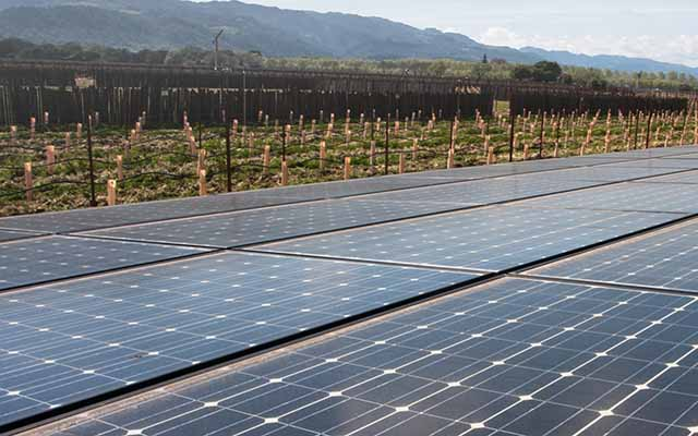 solar powered wineries