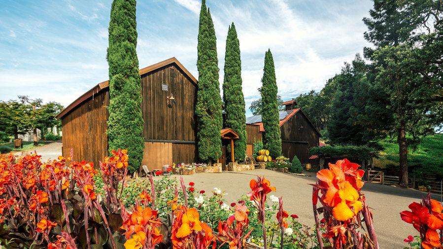 Best Sonoma Wine Tours, Sonoma wine country, Sonoma wine tour reviews