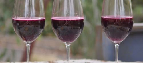 wine-decoded-bathtub-winemaking-project-v16e05-tasting-ferments-feature