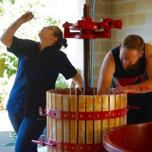 Tresna & Shane Pressing the Bathtub Cab Vintage 2015