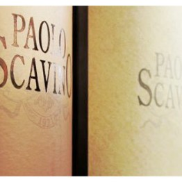Paolo Scavino Bottles for Wine Decoded