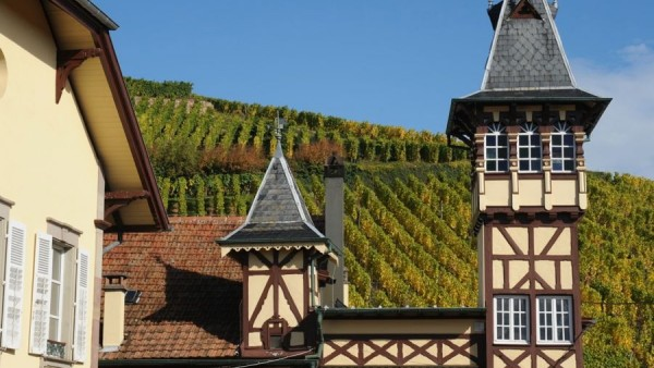 trimbach-photos-17-600x338