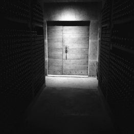 Chave Vintage 2016 in the Cellar