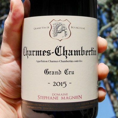 Stephane Magnien Gevrey-Chambertin 'Charmes Chambertin' Grand Cru 2015 by Paul Kaan for Wine Decoded Centered