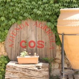 Azienda Agricola COS azienda1