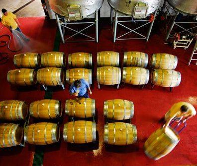 Cullen winemaking_1