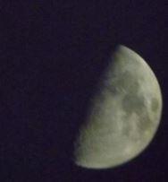 moonshot2