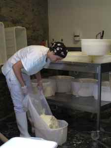 Cheesemaker Ilaria Tomatis draining wet forms of Castelmagno cheese.
