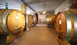 Big format oak barrels in the cellar of Cascina delle Rose.