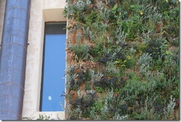 insulating vertical garden