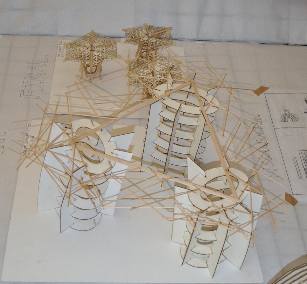 Succulent: Abigail King, Architectural Engineering; Kaustab Das, Architecture; Ryan Huddlestun, Architecture; Alex Beaubien, Construction Management.