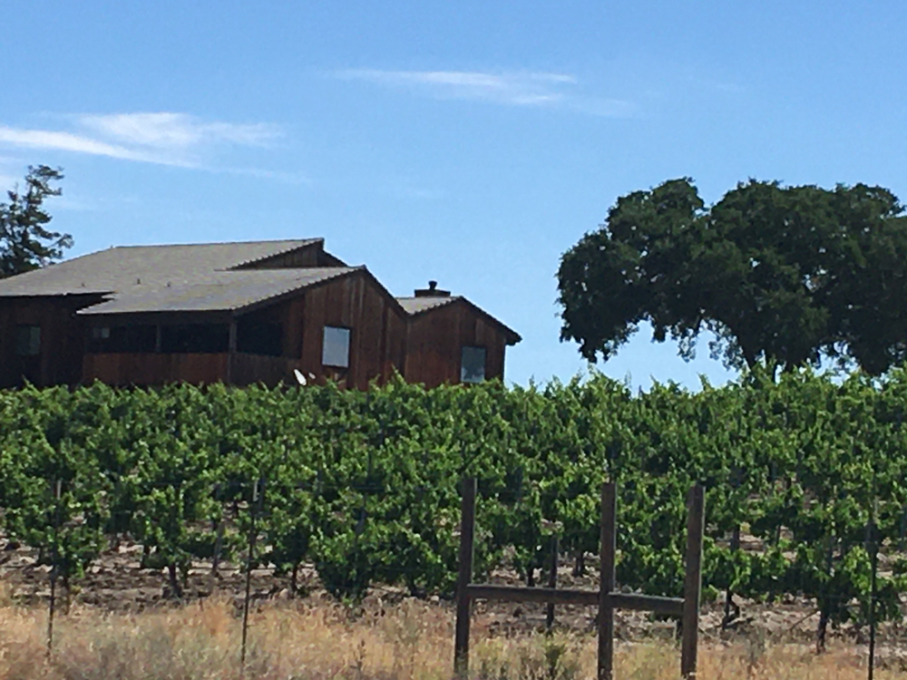Dave Caparone's home and vineyard