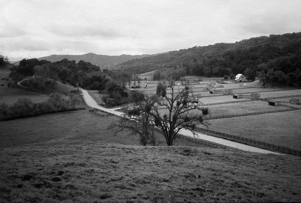 Kentucky Ranch March 5, 1996