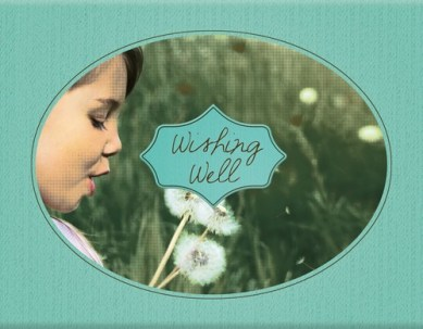 vanderbilt-wishing-well-logo