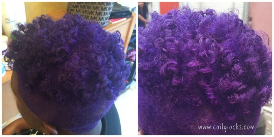 collage-purple-twa-natural-hair-afro-coilylocks-before-after-blonde