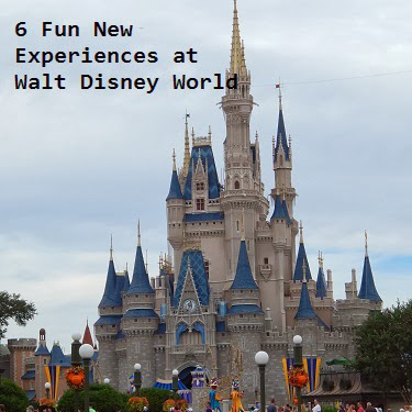 Six Fun New Experiences at Disney World