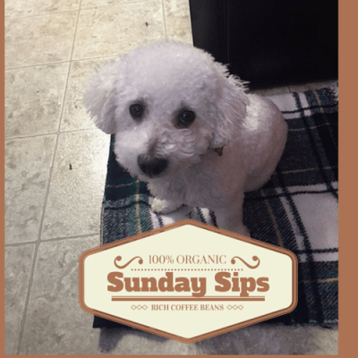 Sunday Sips: Introducing Elvis