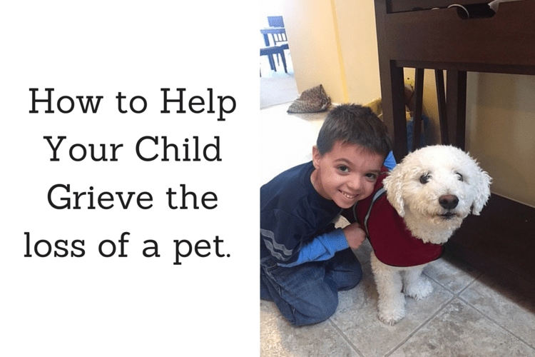 How we helped our son deal with a pet dying. Tips for talking to your child about it and what to expect in the days after.