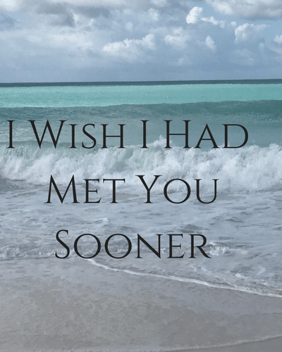 I Wish I Had Met You Sooner