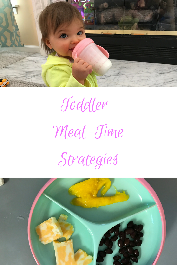 Toddler Meal-time strategies