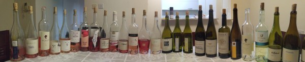 Panaromic picture of all 26 wines in blind tasting