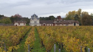 chateau-giscours-and-vineyards