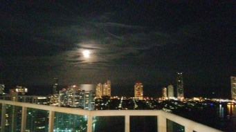 view-from-the-sky-at-elvi-miami-wine-tasting