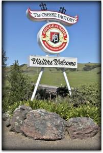 WINEormous at Marin French Cheese in Petaluma, CA