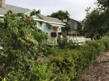 The Old Edna Farmhouse