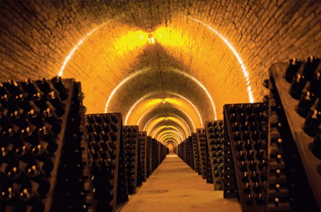 riddling racks in the Krug cellars