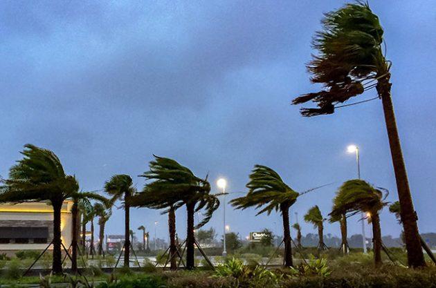 hurricane irma, florida