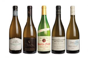 Burgundy panel tasting: Mâconnais 2016 best buys