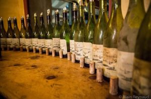 Jefford on Monday: The liquid novel – white Mas de Daumas Gassac