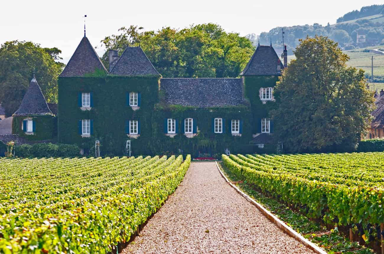 Anson: All change at Burgundy's Clos de la Commaraine