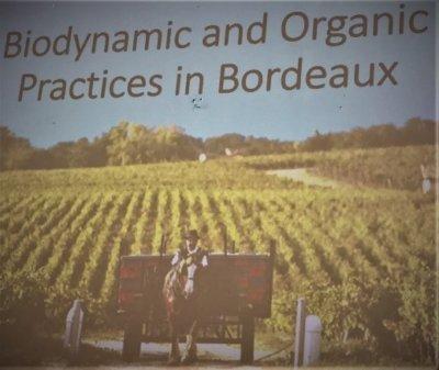 Biodynamic Bordeaux