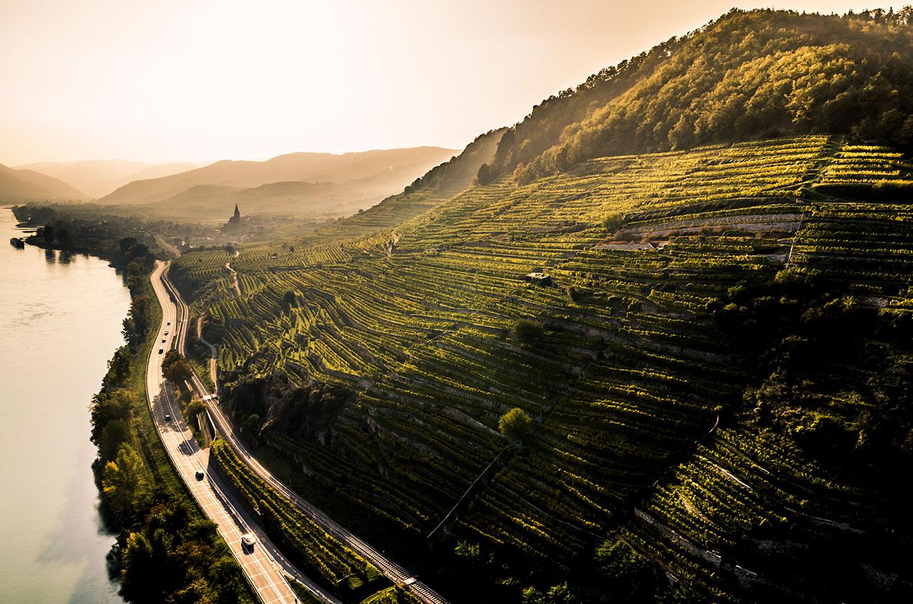 Austria's Wachau region awarded DAC status