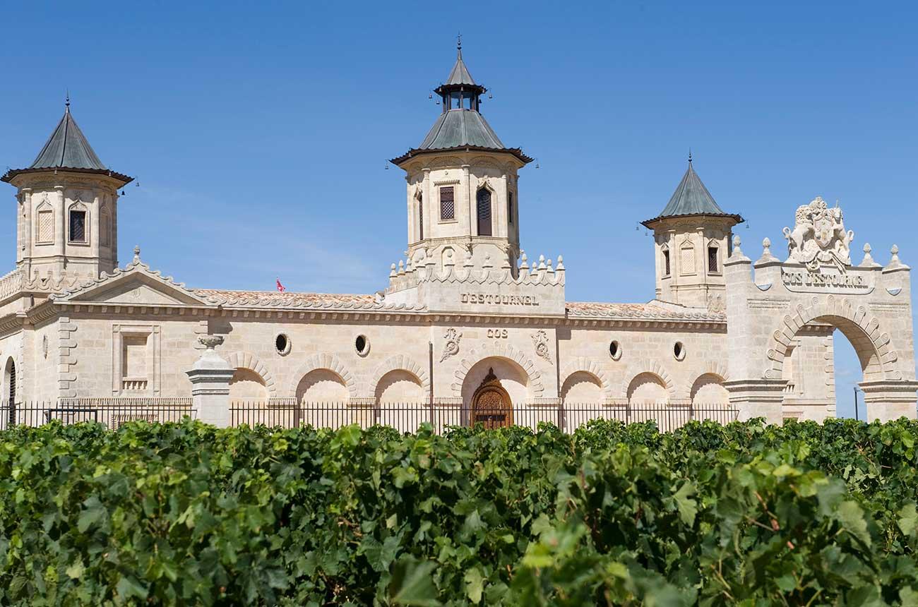 Which Bordeaux 2019 wines sold best en primeur?