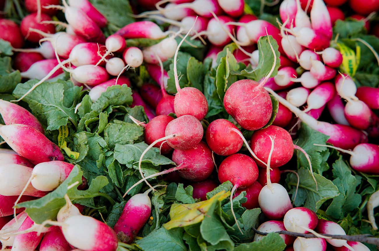 Forget oysters, radish is an 'amazing' Champagne pairing