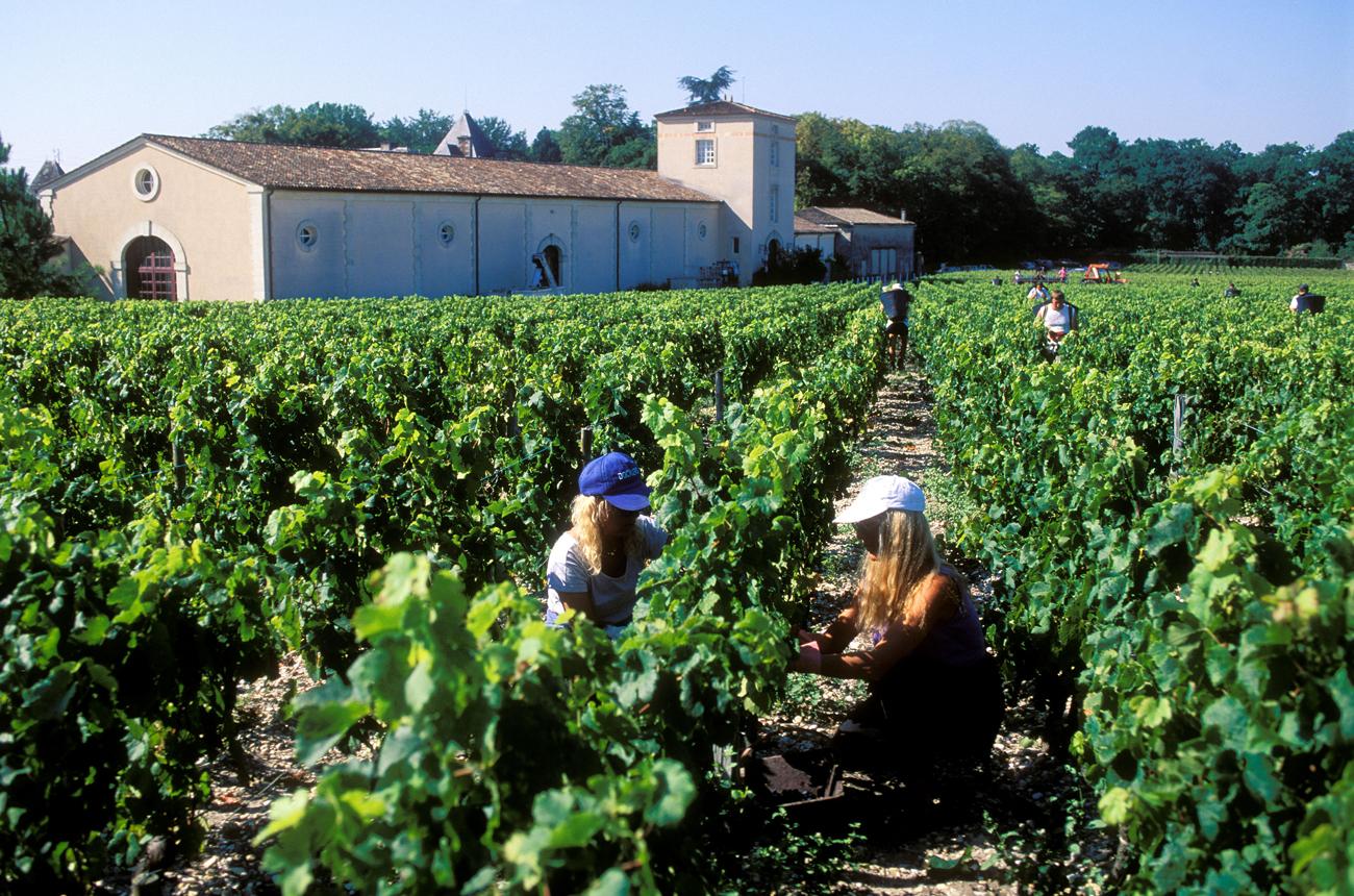 Top Pessac-Léognan & Graves 2018 wines: Re-tasted in bottle