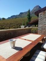 Uva Mira Vineyards Tasting Mountain View