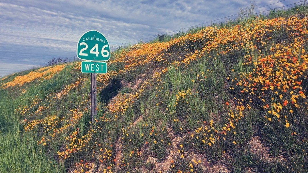 246 West sign